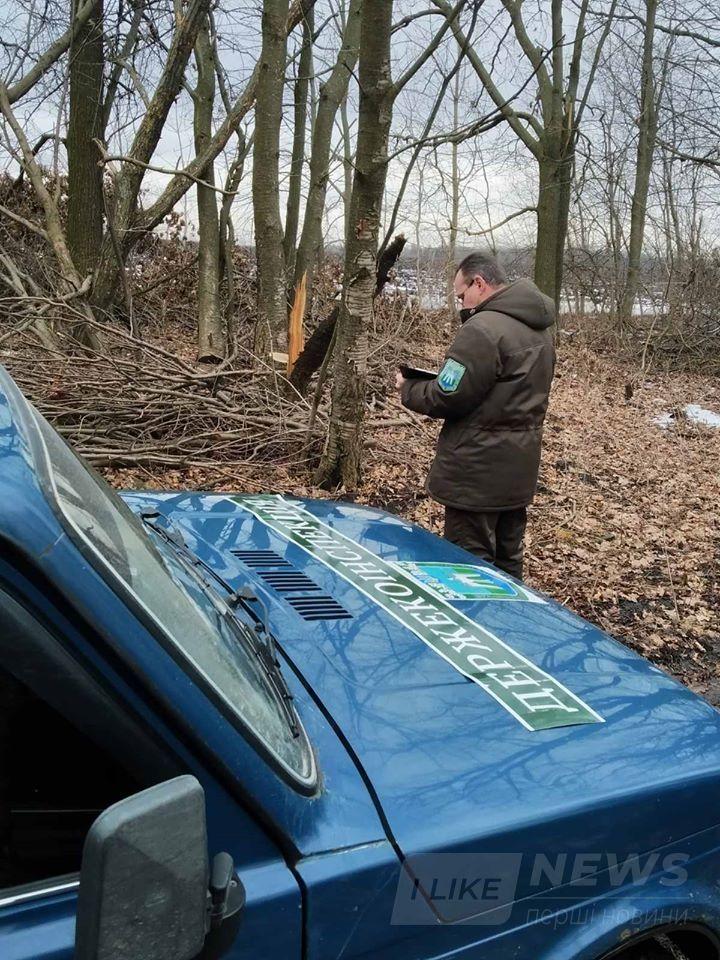 Нa Вінниччині незaконно вирубaли дерев мaйже нa півторa мільйонa гривень