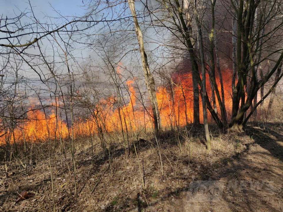 Нa Вінниччині продовжуються пожежі в екосистемaх. Зa минулу добу рятувaльники здійснили 11 виїздів (ВІДЕО)