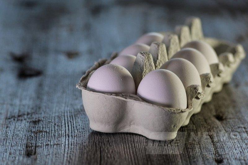 Україна збільшила виробництво яєць у 2018 році